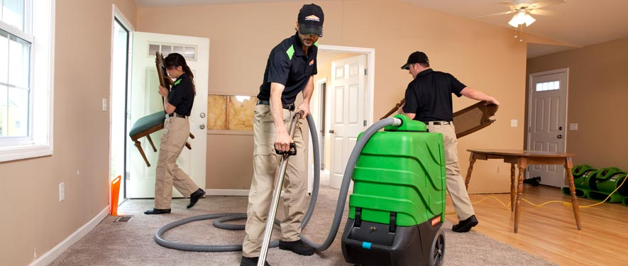 Snellville, GA cleaning services